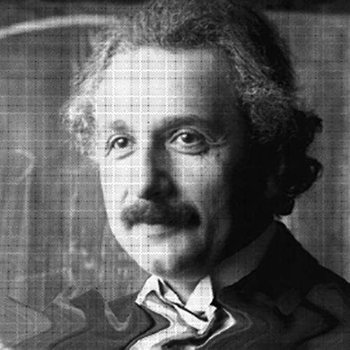 Einstein madness